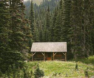 nature, cabin, and cottage image