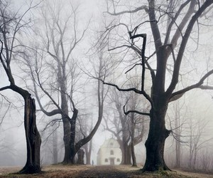fog, house, and spooky image