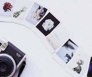 camera, photo, and flowers image