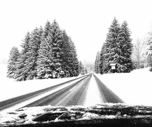 car, road, and snow image