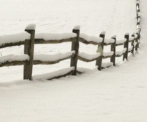 snow, winter, and fence image