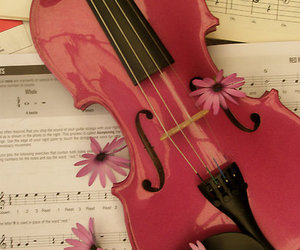 music, violin, and flowers image