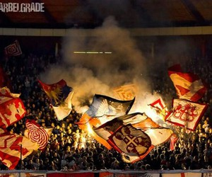 red star, red star belgrade, and delije sever image