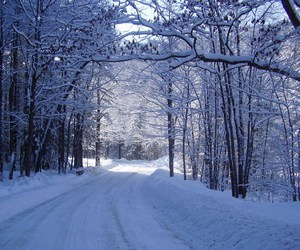 beautiful, winter, and snow image