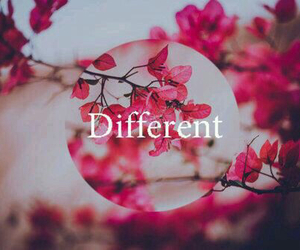different, flowers, and pink image