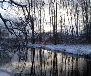 river, forest, and nature image