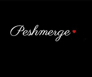 peshmerga, kurd, and kurdistan image