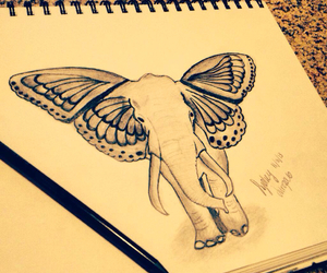 butterfly, elephant, and drawing image