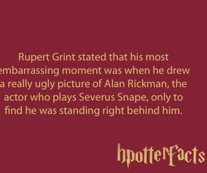 fact, harry potter, and alan rickman image