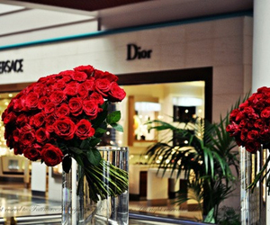 rose, dior, and flowers image