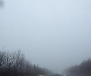 cold, fog, and road image