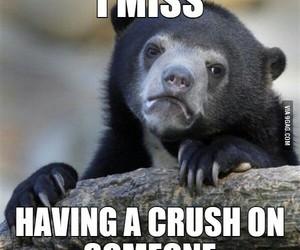 crush, miss, and having image