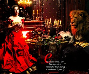 beauty and the beast, drew barrymore, and lion image
