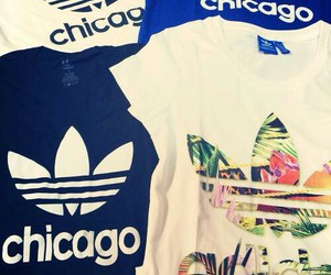chicago and adidas image