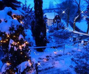 blue, lights, and winter image
