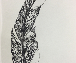 drawing and feather image