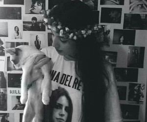 lana del rey, cat, and girl image