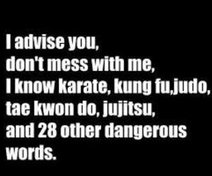 funny, karate, and me image