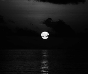 black and white, moon, and midnight image