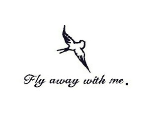 alone and fly image