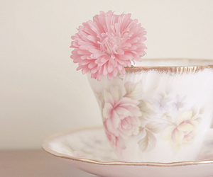cup, flower, and soft image