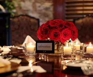 rose, romantic, and flowers image