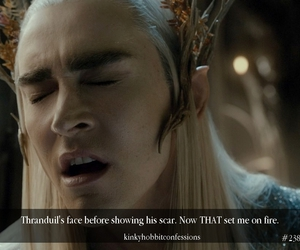 elf, LOTR, and the hobbit image