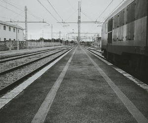 black and white, bw, and grey image