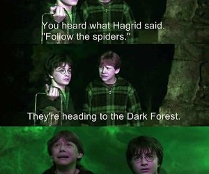 harry potter, spiders, and butterflies image