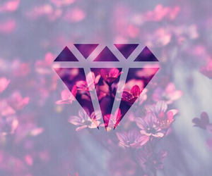 diamond, flowers, and pink image