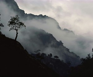 misty and mountains image