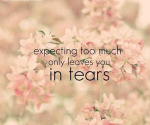 tears, quote, and flowers image