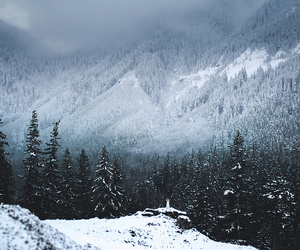 adventure, mountain, and wanderlust image