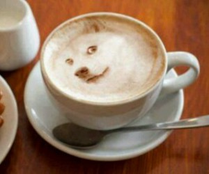 animals, coffee, and fantastic image