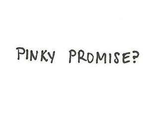 promise and pinky image