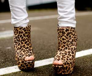 leopard shoes and perfect image