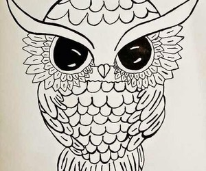 art, drawing, and owl image