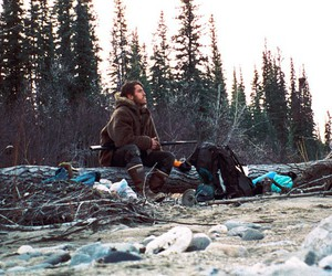 alaska and into the wild image