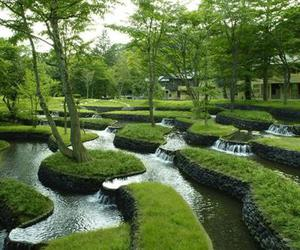 beautiful, green, and garden image