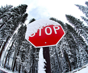 snow, winter, and stop image