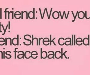 funny, shrek, and best friends image