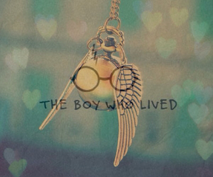 harry potter, quidditch, and the boy who lived image