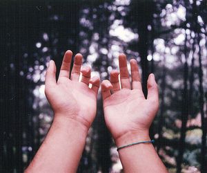 hands and photography image