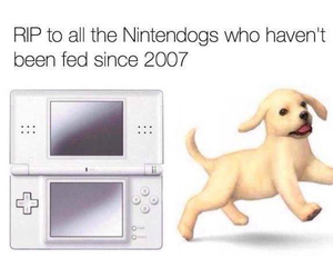 2007, Died, and dogs image