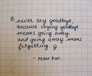 peter pan, quote, and goodbye image