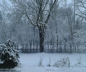 snow, winter, and 2015 image