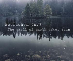 dark, definition, and rain image