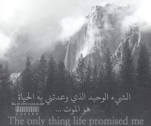 arabic, life, and me image