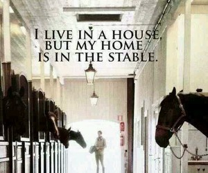 horse, home, and stable image