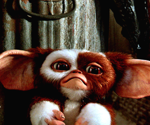 gizmo, gremlins, and movie image